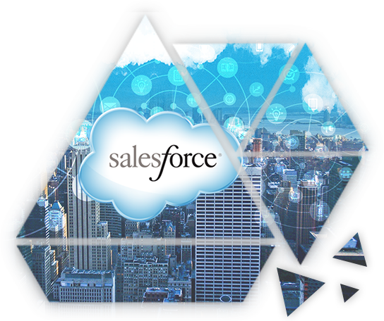 Our Salesforce support packages include